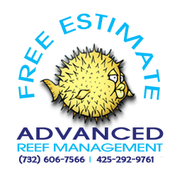 NJ aquariums installed - aquarium maintenance - reef tanks free estimate